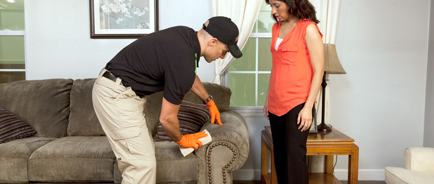 Los Angeles, CA carpet upholstery cleaning